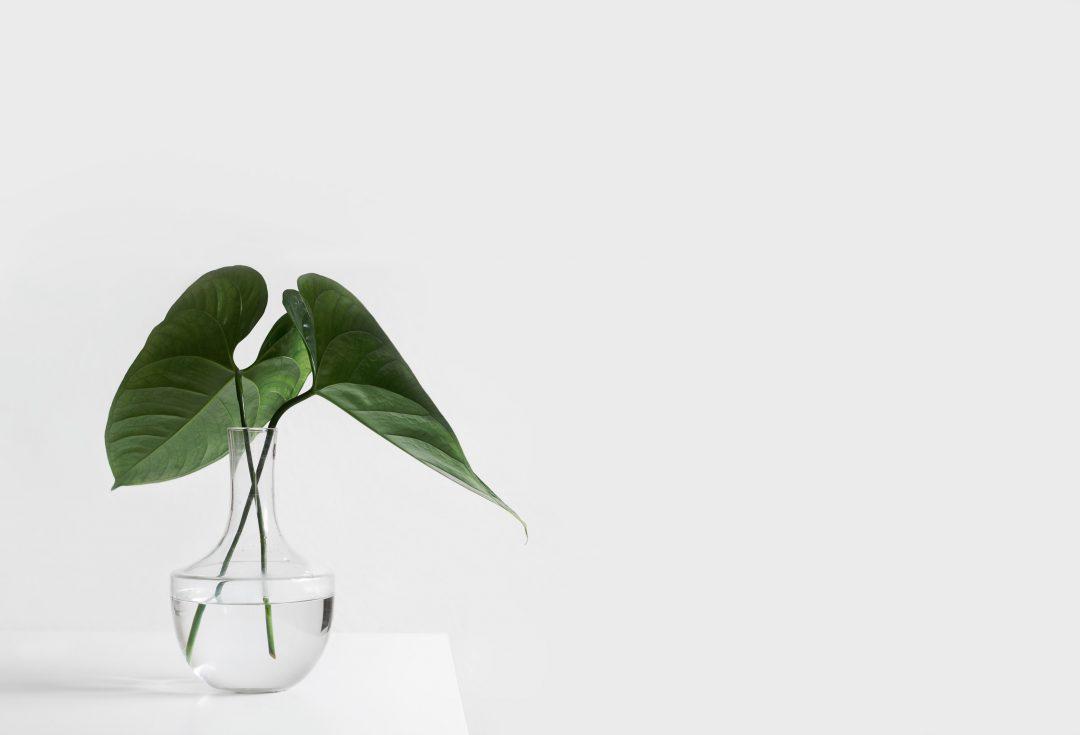 minimalism-header-1080x735.jpeg